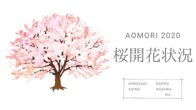 青森の桜 開花状況2020