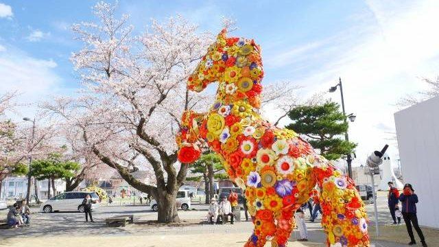 2020年(令和2年)十和田市春まつり 官庁通り(駒街道)【開催中止】