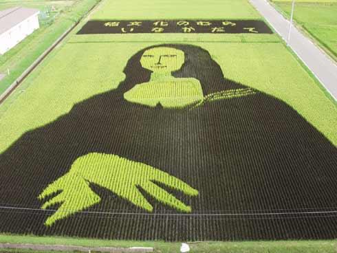 田舎館村 田んぼアート2003 モナリザ